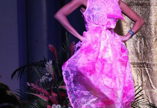 IMG 2753partie1-miss-guadeloupe-prestige2014
